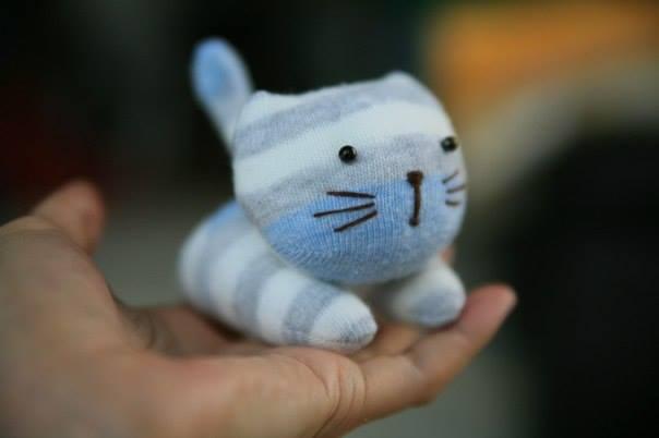 Roztomilé mačiatko zponožky